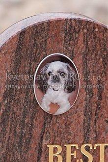 Keramická fotka na pomník pre psíka