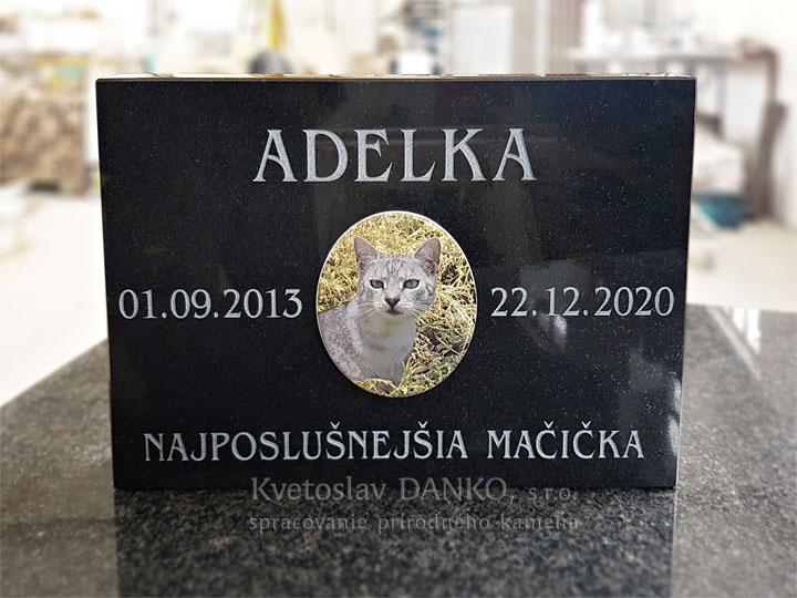 Pomník pre mačku