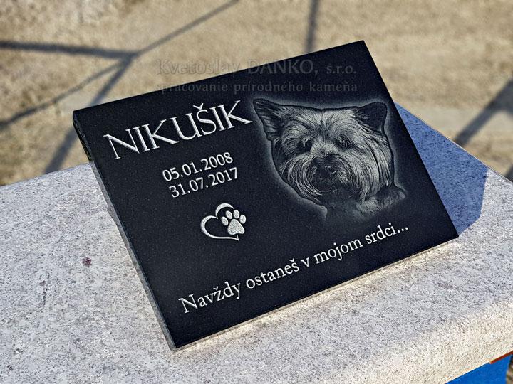 Pomník pre psíka